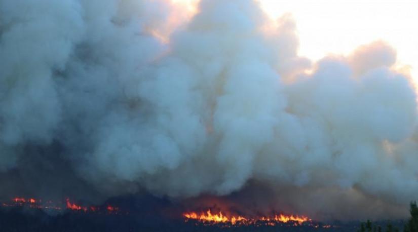 В Турции не осталось пожаров, представляющих угрозу для населённых пунктов
