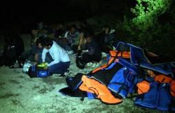 В уезде Бодрум округа Мугла задержаны 42 нелегальных мигранта