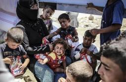 Турция занимает первое место в мире по числу принятых беженцев