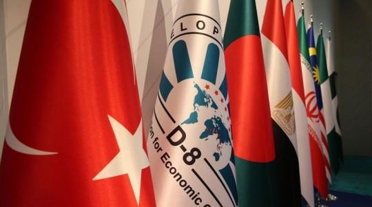 Председательство Турции - стимул для D-8
