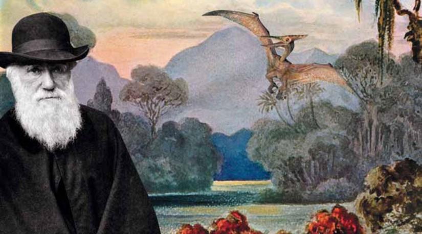 В Турции из учебников убрали теорию Дарвина