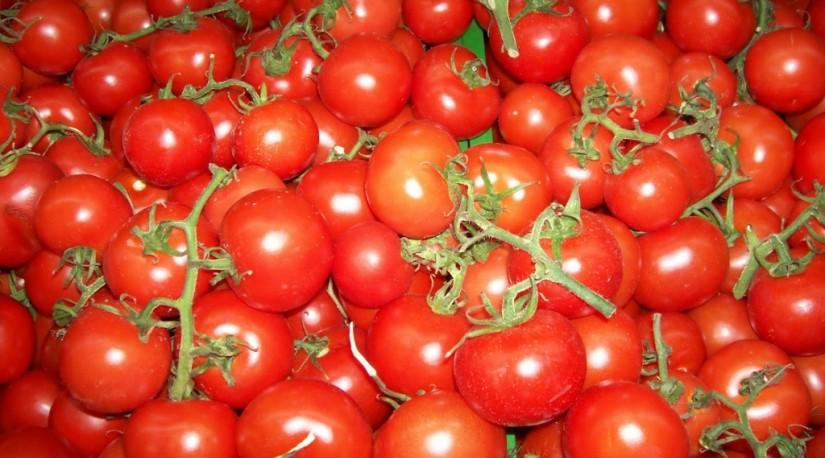 Снижение цен начнется летом: турецкие продукты вернутся в Россию с демпингом