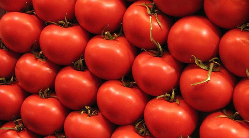 Россельхознадзор разрешил поставки томатов в РФ ещё с пяти турецких предприятий